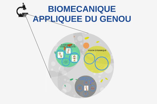 Biomécanique appliquée genou