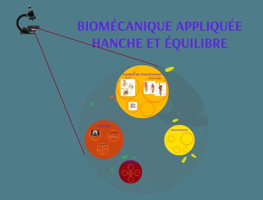Biomécanique appliquée hanche et équilibre